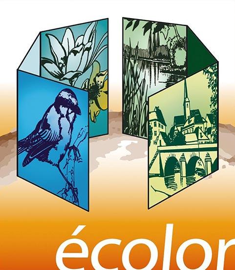 Logo Ecolor